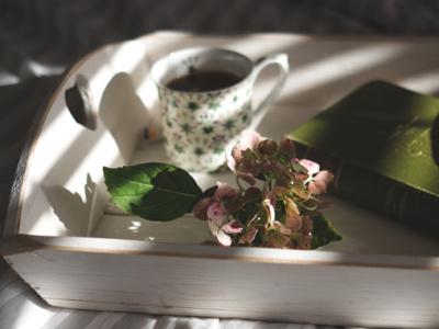 Un libro scritto da Alia Verba per far nascere l'amore